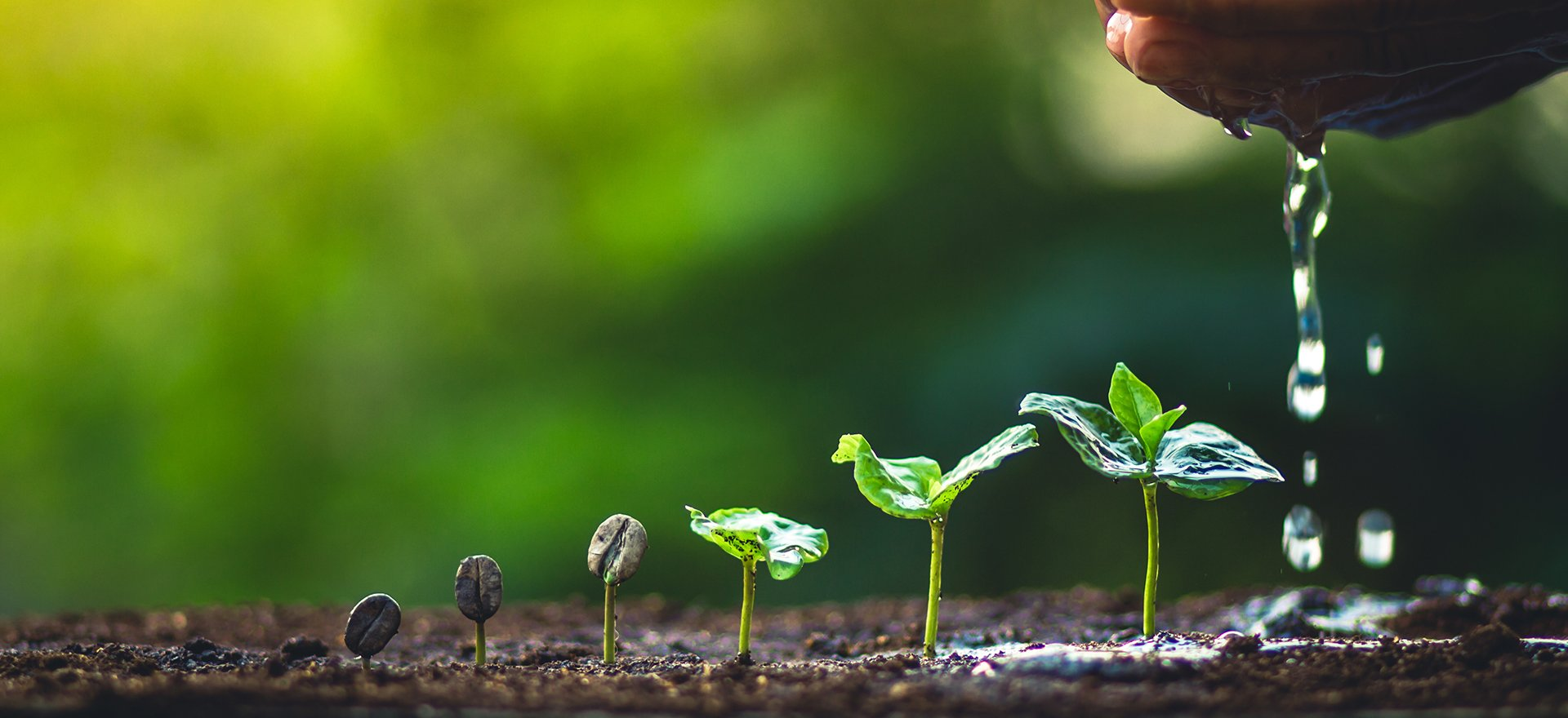 How to Use Nurturing to Turn Leads into Customers